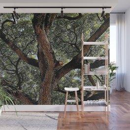 Albuzi Tree Wall Mural
