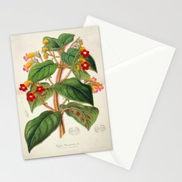 Lydia Warscewiczii Vintage Botanical Floral Flower Plant Scientific Illustration Stationery Cards