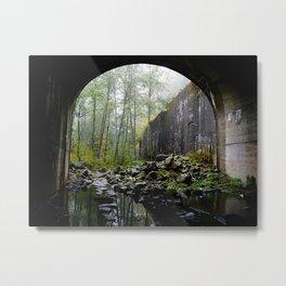 Train tunnel through the trees Metal Print