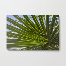 Colorized Wide Palm Leaves Nature / Botanical Photo #tropical #decor #art #society6 Metal Print