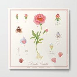 Cupcake flower botanical illustration Metal Print