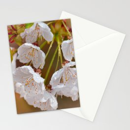 Spring macro 053 Stationery Cards