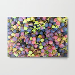 Grapes background Metal Print