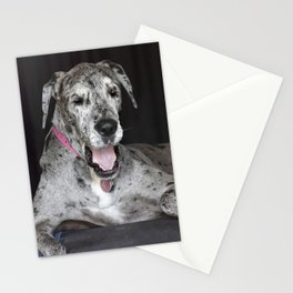 Happy Great Dane Stationery Cards