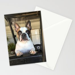 French Bull  Dog  Puppies Stationery Cards
