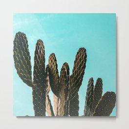 Cactus Photography Print {1 of 3}   Teal Succulent Plant Nature Western Desert Plants  Design Decor Metal Print