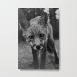 The Fox (Black and White) Metal Print