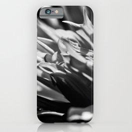 In The Sunshine iPhone Case