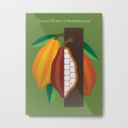 Cacao Plant Metal Print