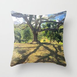 Tire Swing in a Tropical Place Throw Pillow