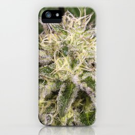 Girl scout cookie bud iPhone Case