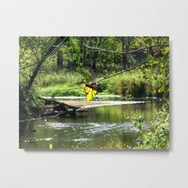 Peaceful Waters Metal Print