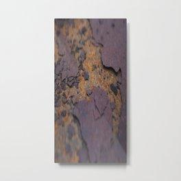 Rust on Rust rustic decor Metal Print