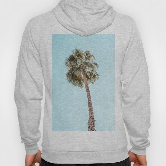 Single Palm by galdesign