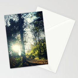 Autumn forest sunset Stationery Cards