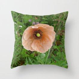 Papaver atlanticum (Peach Colored Poppy) Throw Pillow