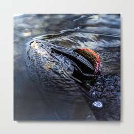 Grayling on the line Metal Print
