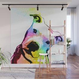 Pit bull   Rainbow Series   Pop Art Wall Mural