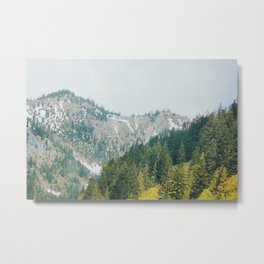 The Evergreen State  Metal Print