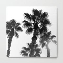 Palm Tree Art Print {3 of 3} | B&W Topical Beach Plant Nature Vacation Sun Vibes Artwork Metal Print
