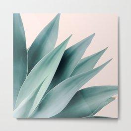 Agave flare II - peach Metal Print