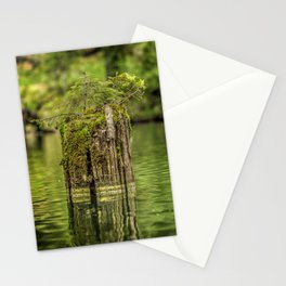 Lonely pine sprout on an old tree trunk in a lake Stationery Cards