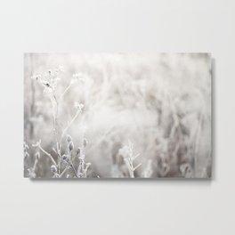 Frozen Meadow Flowers Metal Print