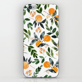 Orange Grove iPhone Skin