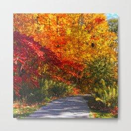Paved Autumn Path Metal Print