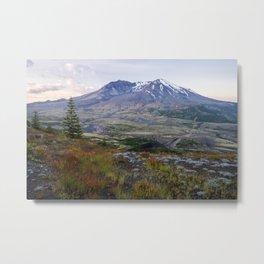 Mt. St. Helens at Sunrise with Peak Summer Flowers Metal Print