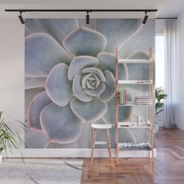 Nature Photography   Cactus Art   Pink and Blue Succulent   Plant   Botanical Wall Mural