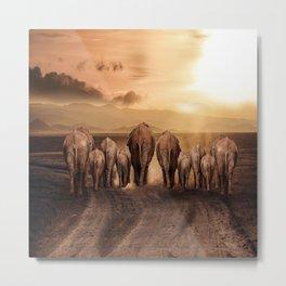 elephant dust road africa savana Metal Print