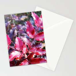 Rain on leaflets Stationery Cards