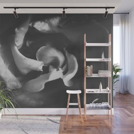 closeup rose in black and white Wall Mural