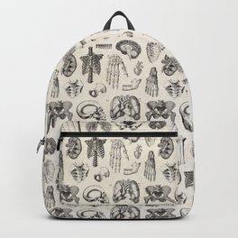 Human Anatomy Backpack