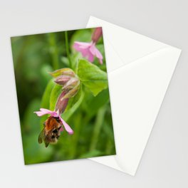 The Pollinator Stationery Cards