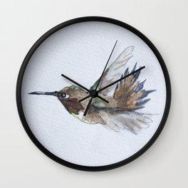 Rufous Hummingbird Wall Clock
