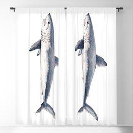 Porbeagle shark (Lamna nasus) Blackout Curtain