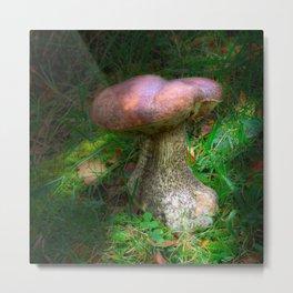 Penny Bun Fairy Mushroom Metal Print