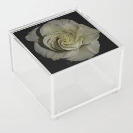 Innocence Acrylic Box