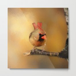 Female Cardinal Excited for Spring Metal Print