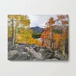 Rocky Mountain Fall Color. 9-22-15  Metal Print