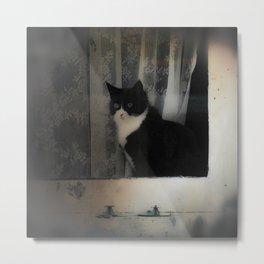 One Cat in the window Metal Print