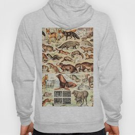 Cute Animals // Fourrures by Adolphe Millot XL 19th Century Science Textbook Diagram Artwork Hoody