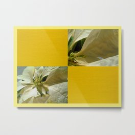 Pale Yellow Poinsettia 1 Blank Q7F0 Metal Print