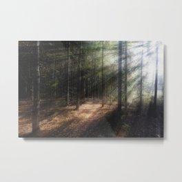 Whispering Light Metal Print