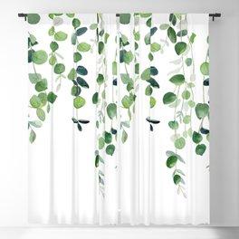 Eucalyptus Watercolor 2  Blackout Curtain