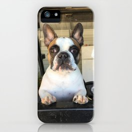 French Bull  Dog  Puppies iPhone Case