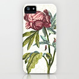 The Great Rose illustration iPhone Case