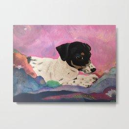 Rat Terrier Gretchen is a Shooting Star Metal Print